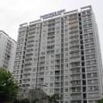 Theo các chuyên gia, thị trường căn hộ Việt Nam đang đứng trước những thách thức to lớn. Ảnh: Vũ Lê