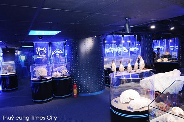 Khu trưng bày mẫu vật Thủy cung