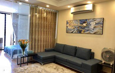 Ảnh Phòng khách – Căn hộ Royal City R6, 1 ngủ, 55m2 đủ đồ